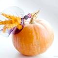 Як оформити весільний стіл восени: вся краса яскравих фарб